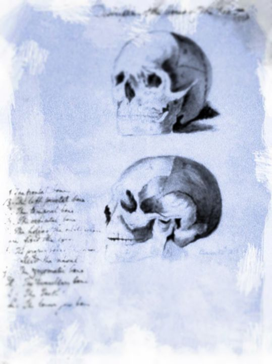 Human skulls - ISRA