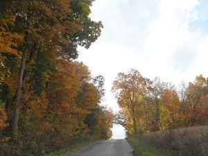 Fall Day In Ohio