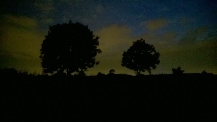 Hay Fields at night - Dragonbeardblue Art