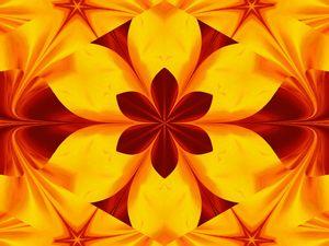 Fire Flowers 45