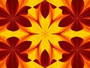 Fire Flowers 46
