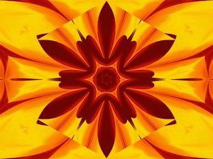 Fire Flowers 47