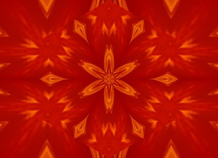 Fire Flowers 60 - Sherrie D. Larch