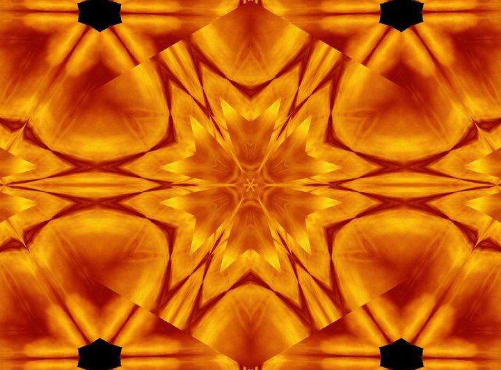 Fire Flowers 115 - Sherrie D. Larch