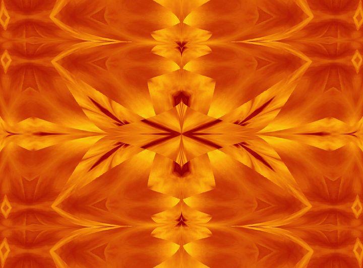 Fire Flowers 117 - Sherrie D. Larch
