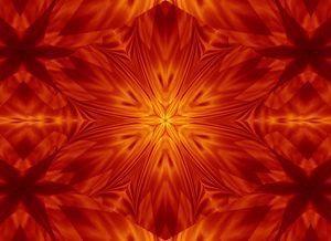 Fire Flowers 142