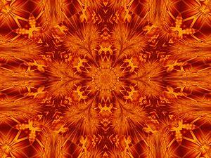 Fire Flowers 149