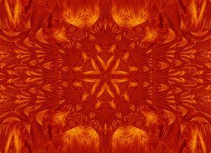Fire Flowers 178