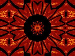 Fire Flowers 296