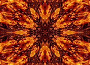 Eternal Flame Flowers 63