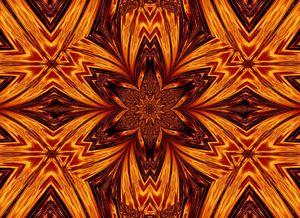 Eternal Flame Flowers 64