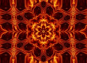 Eternal Flame Flowers 66