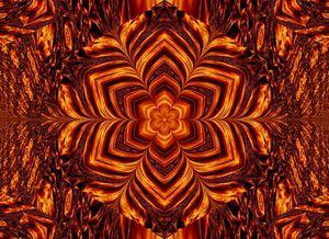 Eternal Flame Flowers 67