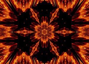 Eternal Flame Flowers 72