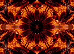 Eternal Flame Flowers 73