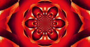 Red Fire Flower 2