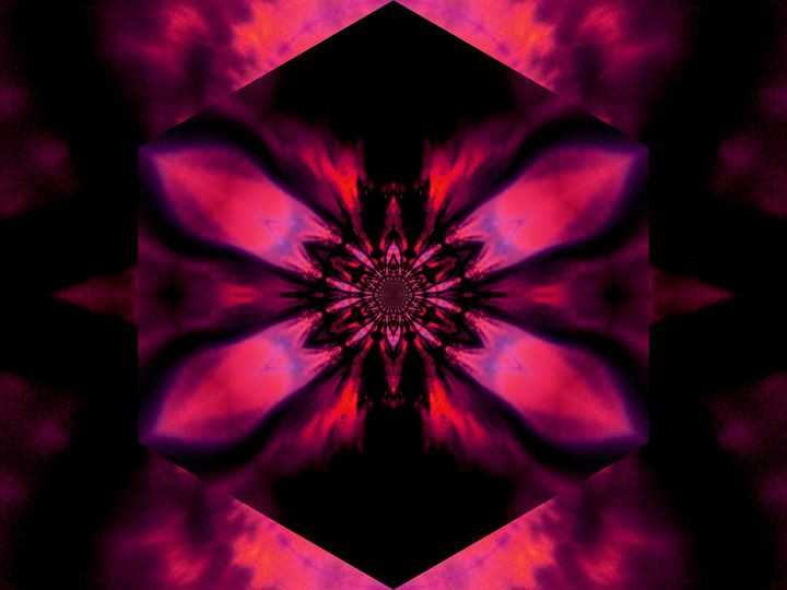 Fire Lotus Pink 2 - Sherrie D. Larch
