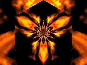 Fire Lotus Orange 1 - Sherrie D. Larch