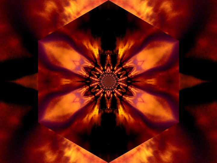 Fire Lotus Gold 2 - Sherrie D. Larch