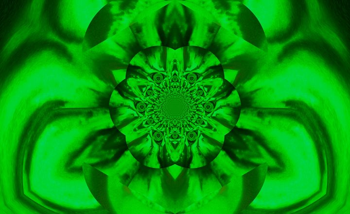 Lotus in Green Satin - Sherrie D. Larch
