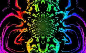 Lotus in Black and Rainbow Satin