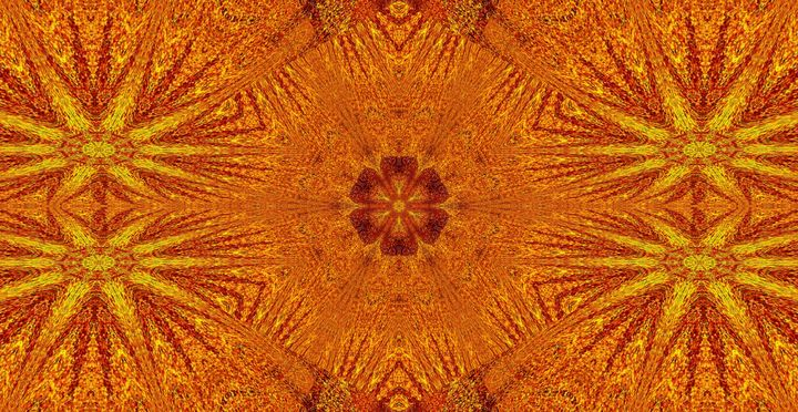 Pure Sunshine Wildflower - Sherrie D. Larch