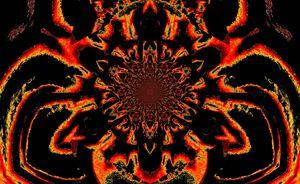 Lotus in Black and Orange Satin