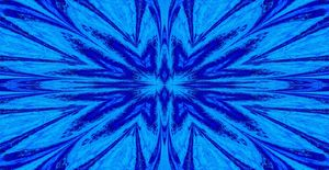 A Blue Wildflower 4