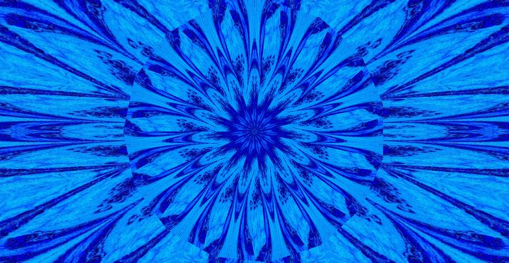 A Blue Wildflower 5 - Sherrie D. Larch