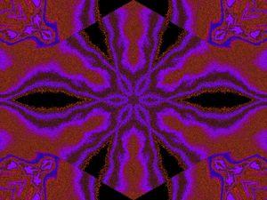 A Flower 5