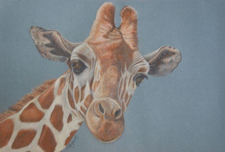 Giraffe - Tracey Bryant
