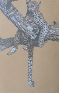 Cheetah - Tracey Bryant