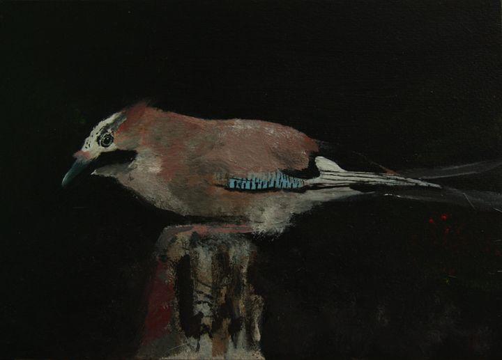 Jay at night - Dworkin