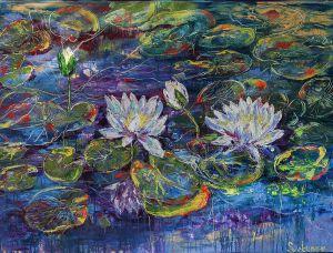 Water Lilies - SVETUNE