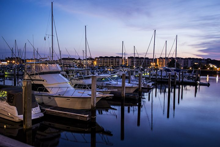 Coquina Harbour - Myrtle Beach Days Collection