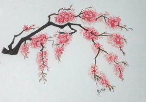Cherry blossoms to cheer