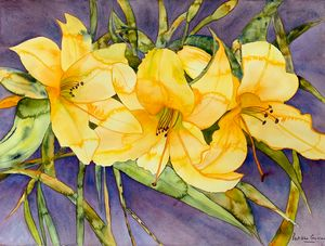 Blooming lillies