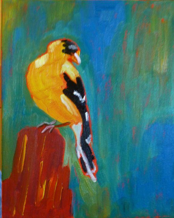 Colorado Birds I - Susan Tormoen