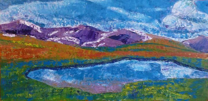 The Pass - Susan Tormoen
