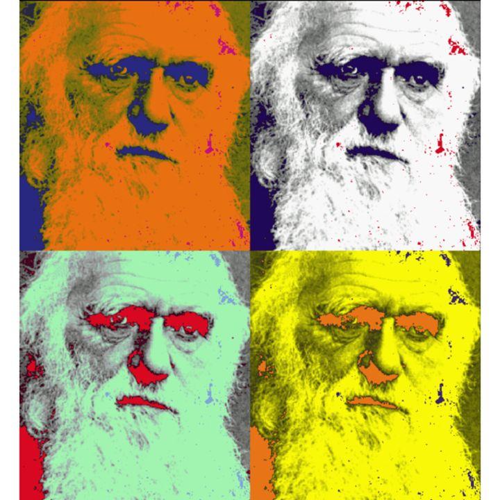 Darwin in Pop (2012) - F.R.@.M.E.X