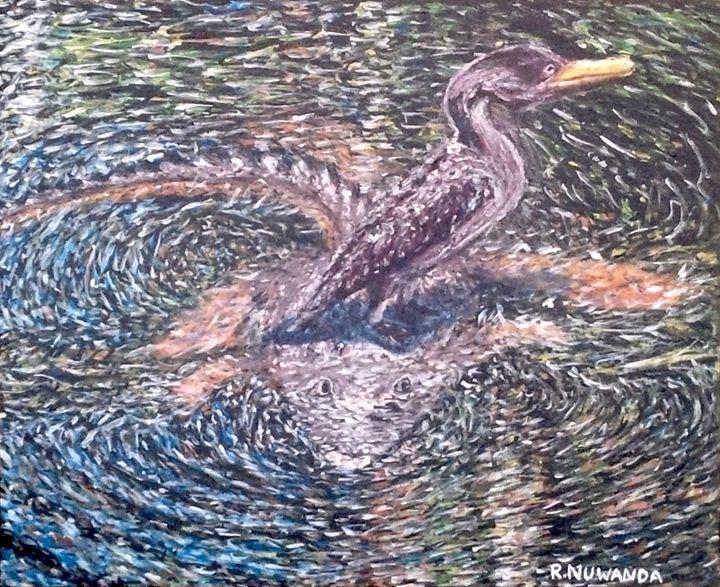 Anhinga Everglades Look Out - Robbie Nuwanda