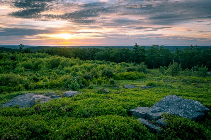 Sweet sunrise - Ryan Houde Photography