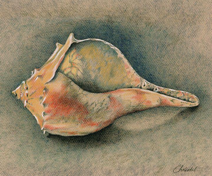 Rustic Cottage Shell - Christel Huttar