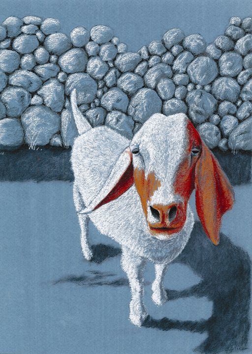 Crazy Old Goat - Christel Huttar