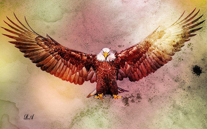 The Eagle - RON ASHKENAZI ART