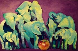 Elephant's Football