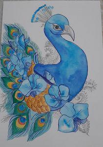 Elegeant Peacock