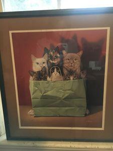 Braldt Bralds cat in bag