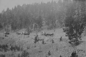 Yellowstone Stagecoach Route 1915