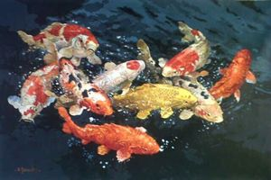Joy of Golden Koi by Sumantri